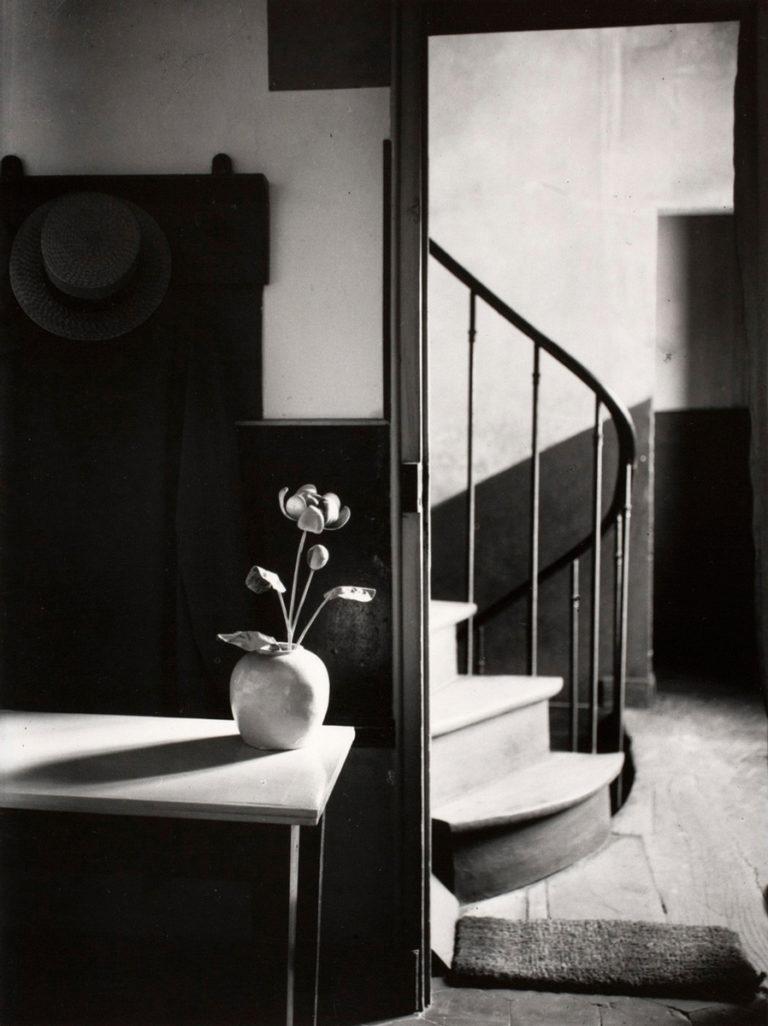 Holden Luntz Gallery : Simple Pleasures : The Language of Flowers